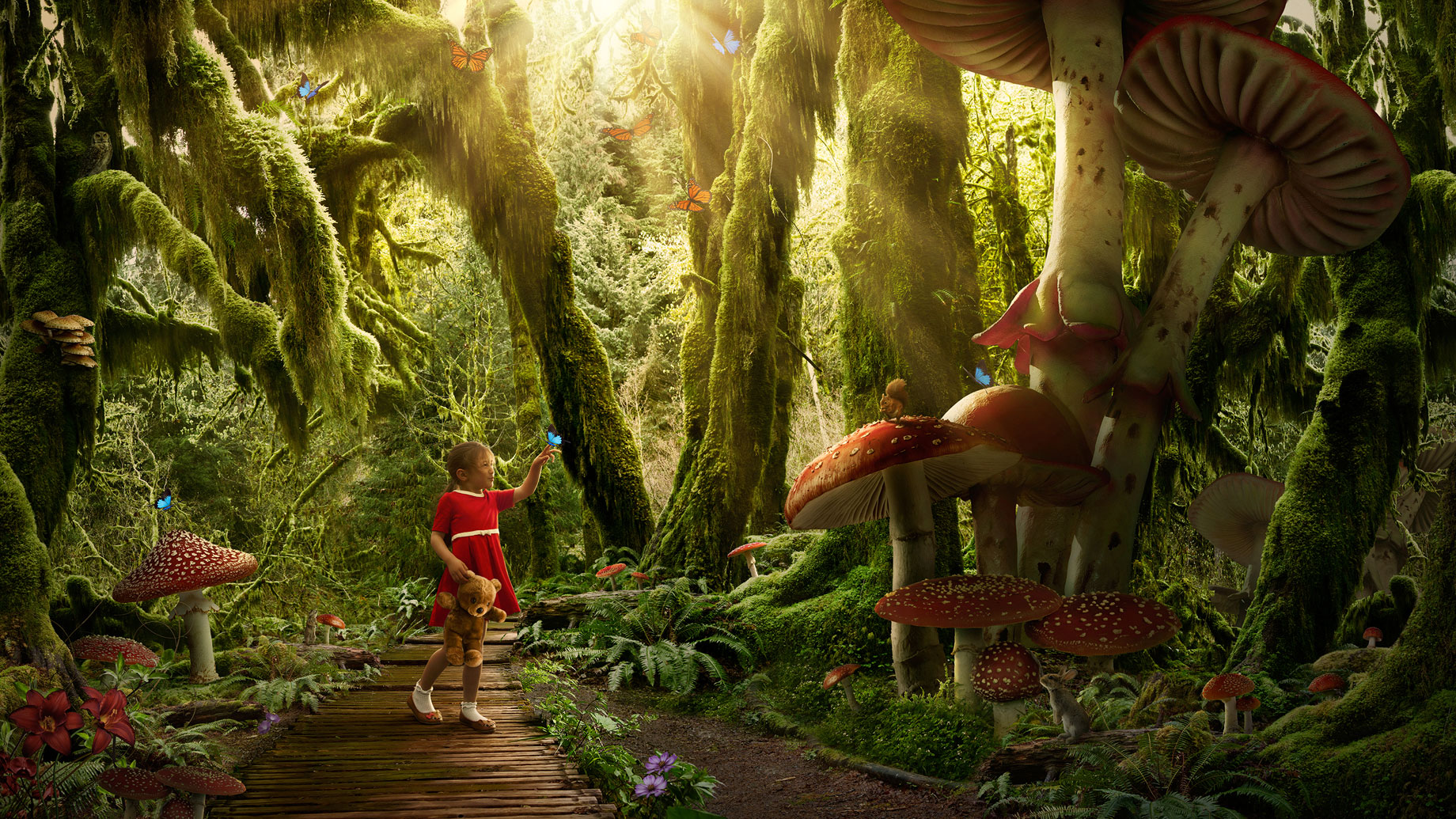 ChildrensDreams_EnchantedForest